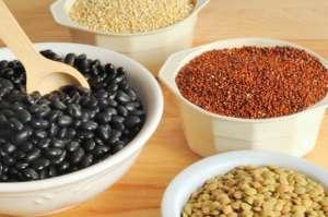 Здоровое питание. Источники белков в вегетарианской диете